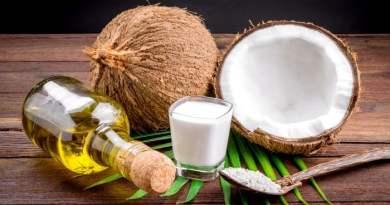 coconuts oil and milk on black background - Óleo de coco: Veja os Mitos e as Verdades Sobre Ele