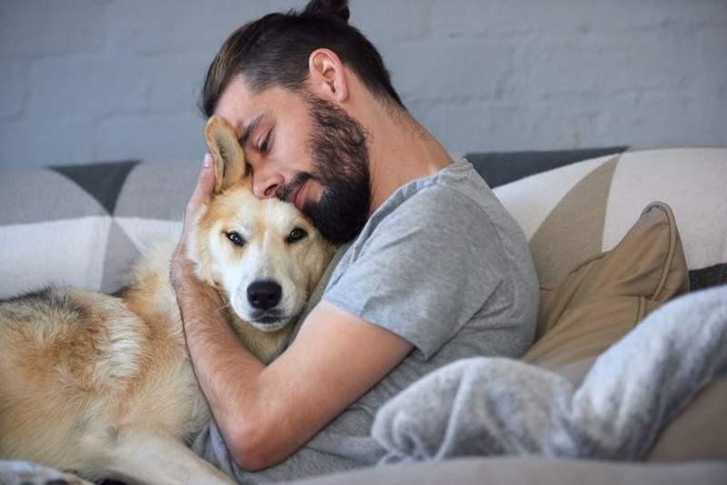 ANIMAIS DE ESTIMAÇÃO FAZ BEM A SAUDE 3 - Você Sabia que Ter Animais de Estimação Faz Bem à Saúde?