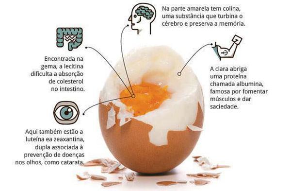 ovos e colesterol