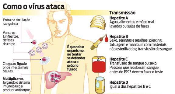 2 12 - Tipos de hepatite e seus sintomas: saiba tudo sobre essa doença