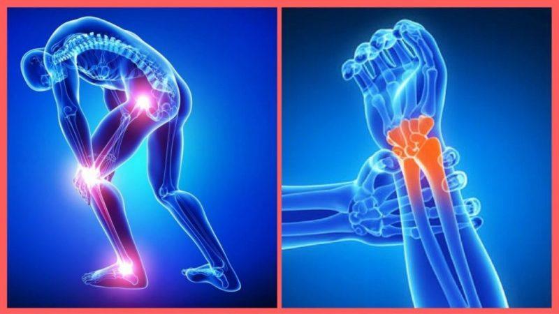 fonte da saude moringa dores no corpo 1024x576 - Moringa Caps - Médicos Descobrem Solução Natural Para Cansaço e Indisposição