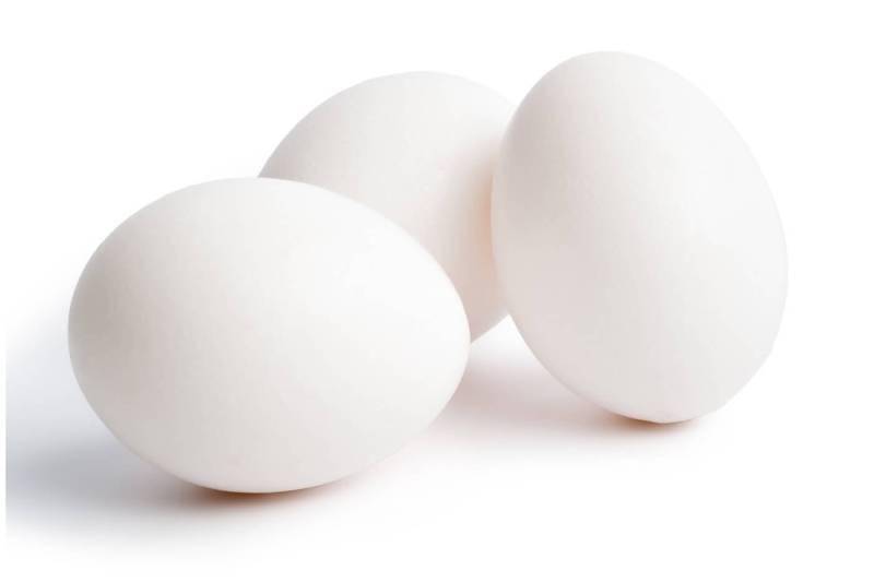 fonte da saude ovo branco