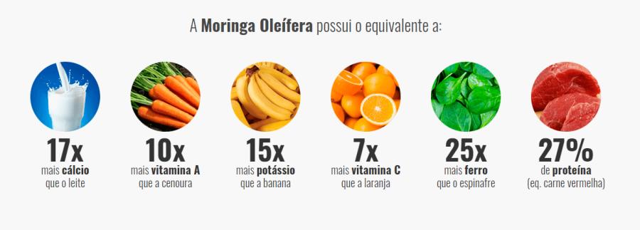 """proteinas na moringa - Moringa Caps Funciona? Saiba Tudo sobre a """"Árvore Milagrosa"""" Aqui!"""
