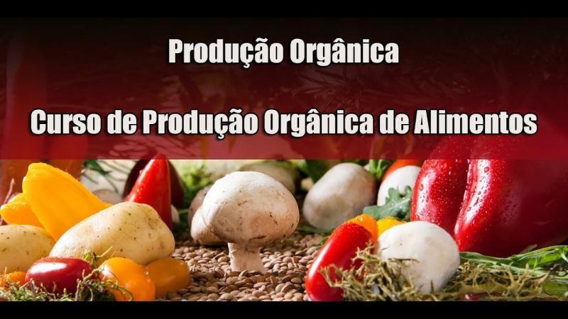 Fonte da Saude Curso Online de Producao de Alimentos Organicos funciona 1024x576 - Curso Online de Produção de Alimentos Orgânicos