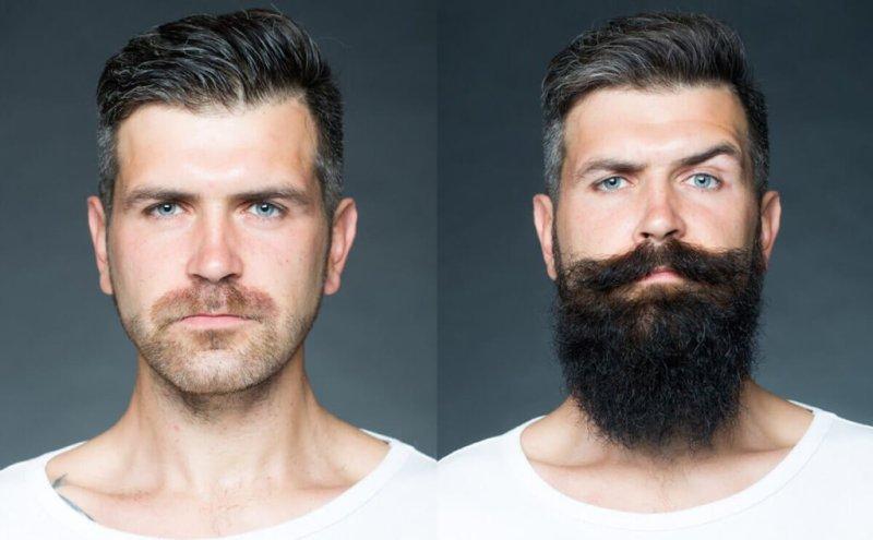 Barbeks ou brbeks - antes de depois - Tenha uma barba de lenhador com o Barbeks brbeks - Como fazer a barba cresce