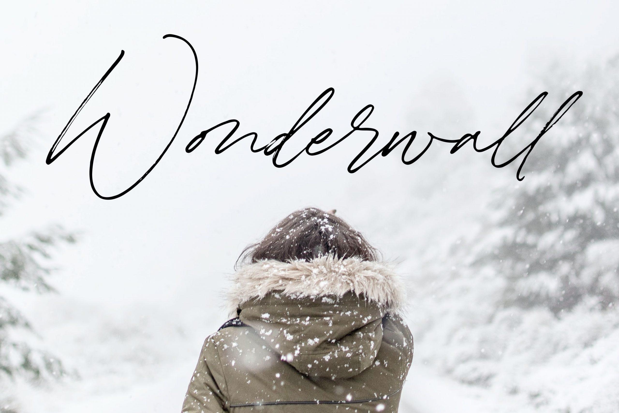 Winterlady3