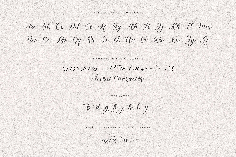 Angelinea Elegant Calligraphy Font6
