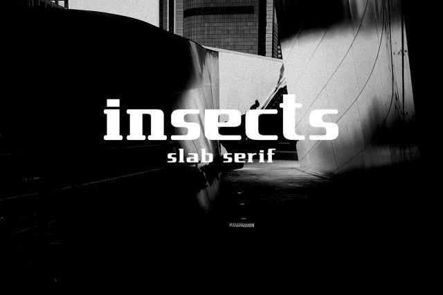 insect slab serif