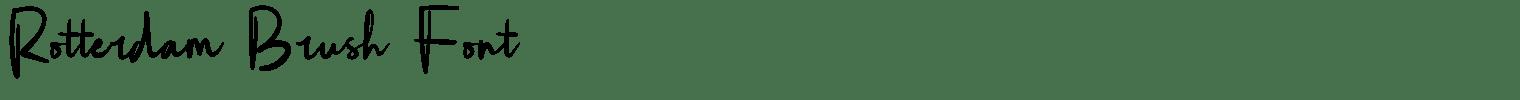 Rotterdam Brush Font