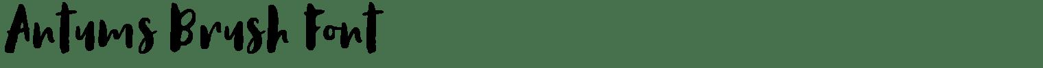 Antums Brush Font