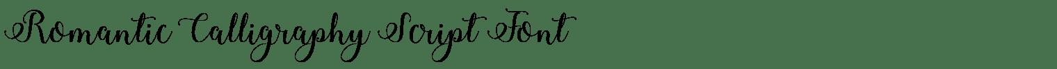 Romantic Calligraphy Script Font