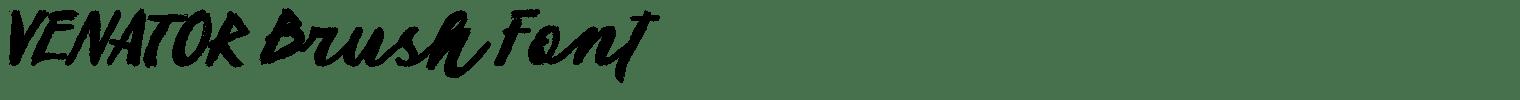 VENATOR Brush Font
