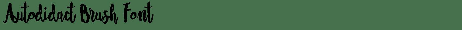 Autodidact Brush Font