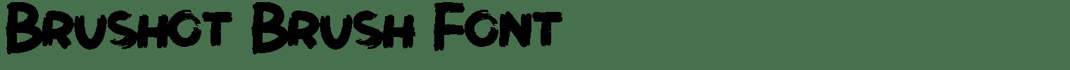 Brushot Brush Font