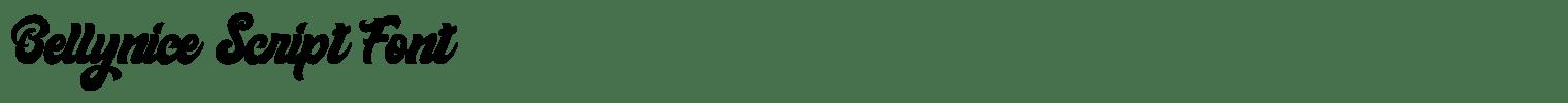 Bellynice Script Font