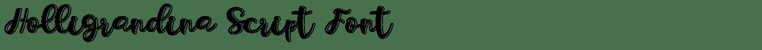 Holligrandina Script Font