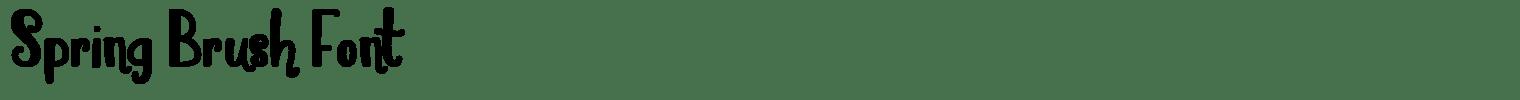 Spring Brush Font