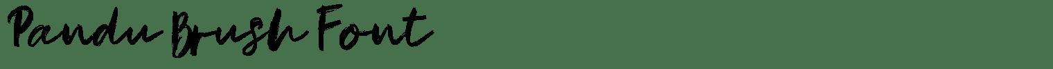 Pandu Brush Font