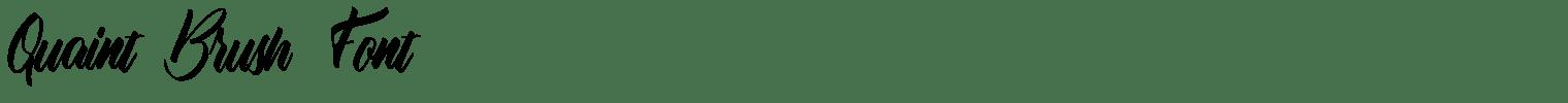 Quaint Brush Font