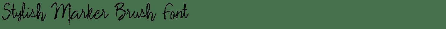 Stylish Marker Brush Font