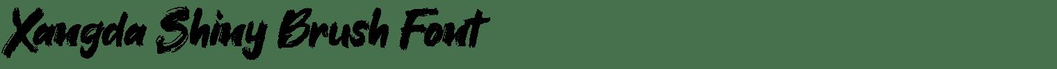 Xangda Shiny Brush Font