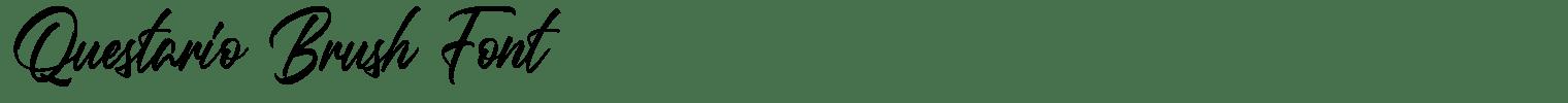 Questario Brush Font