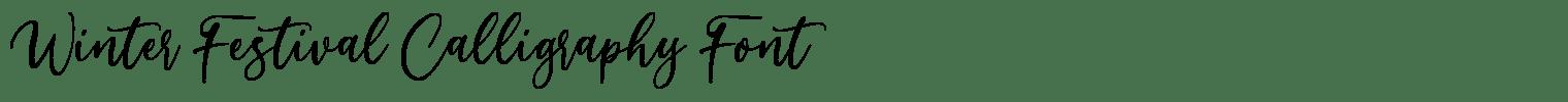 Winter Festival Calligraphy Font