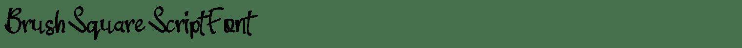 Brush Square Script Font