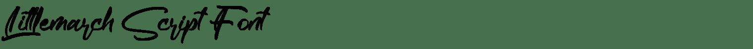 Littlemarch Script Font