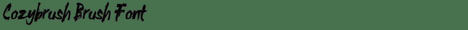 Cozybrush Brush Font