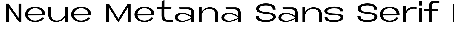 Neue Metana Sans Serif Font