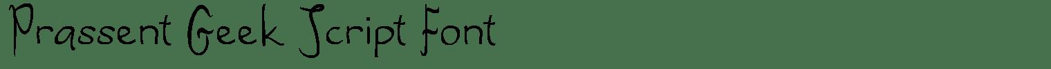 Prassent Geek Script Font
