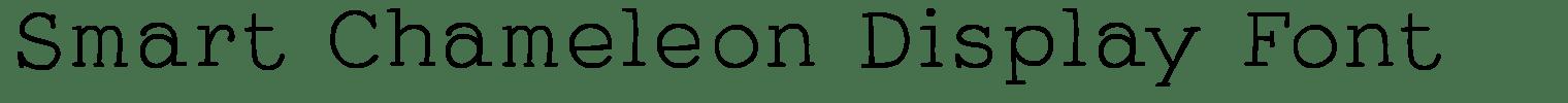 Smart Chameleon Display Font