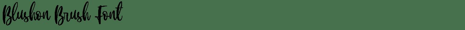 Blushon Brush Font