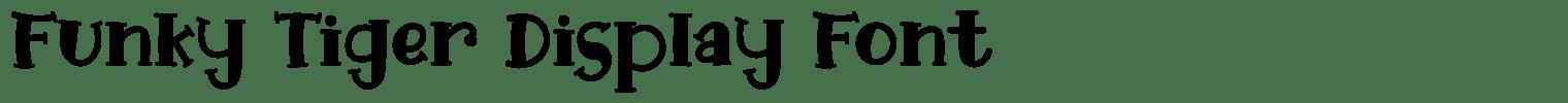Funky Tiger Display Font