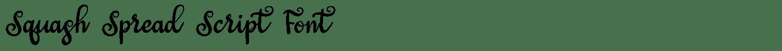 Squash Spread Script Font