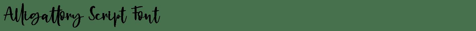 Alligattory Script Font