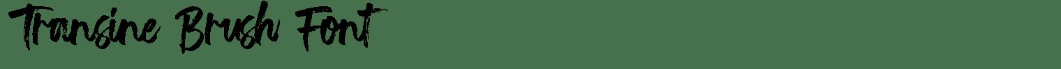 Transine Brush Font