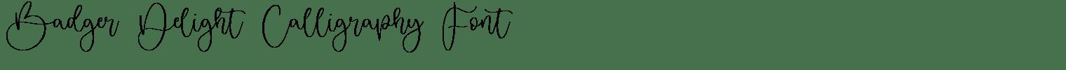 Badger Delight Calligraphy Font