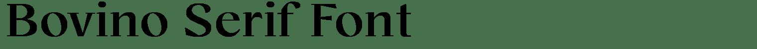Bovino Serif Font