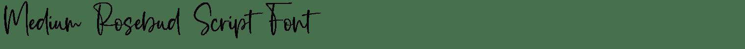 Medium Rosebud Script Font