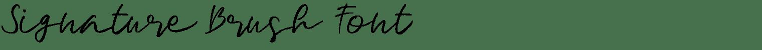 Signature Brush Font