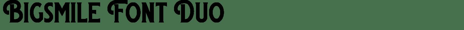 Bigsmile Font Duo