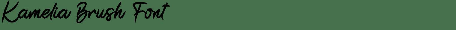 Kamelia Brush Font