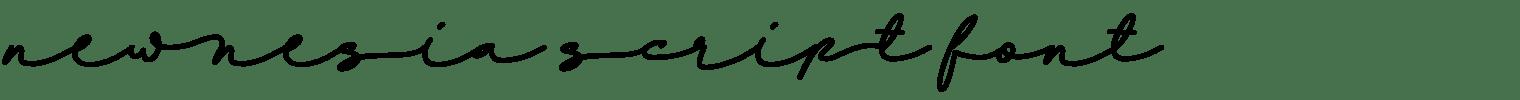 Newnesia Script Font