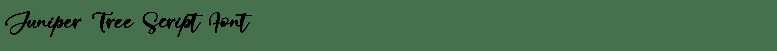 Juniper Tree Script Font
