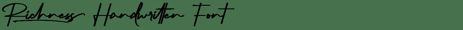Richness Handwritten Font