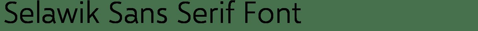 Selawik Sans Serif Font