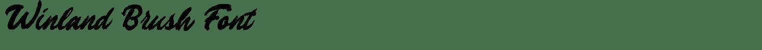 Winland Brush Font
