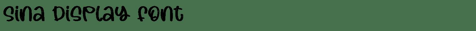 Sina Display Font